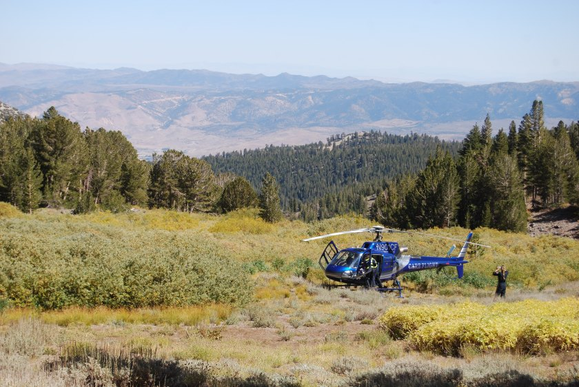 life-care-helicopter-near-the-mount-rose-trail_3958858745_o