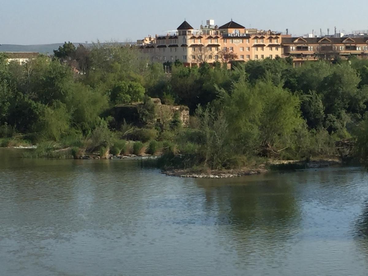 Sevilla to Córdoba